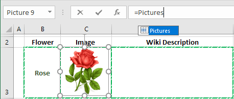 Linked image in Excel 2016