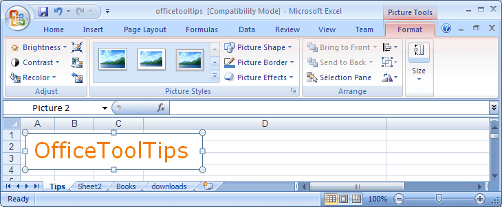 Picture Tools in Excel 2007