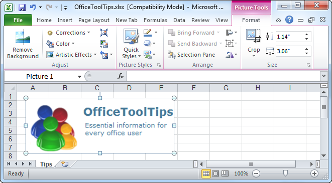 Picture Tools in Excel 2010