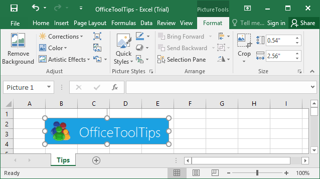 Picture Tools in Excel 2016