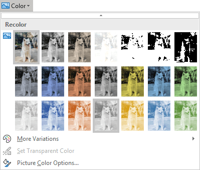 Recolor picture in PowerPoint 365
